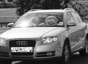 Muppet ao volante